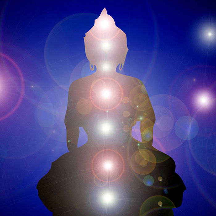 Chakra Health and Wholeness by Jarrad Hewett